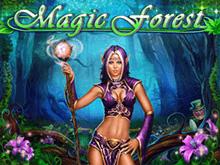 Онлайн-автомат Magic Forest от Playson: выиграть можно